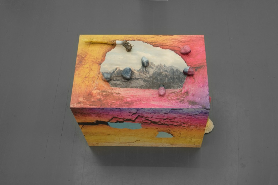 Adaptive Colorations I, 2016. Printed wood, bransch, stone, polypore, clay, plaster and pigment.