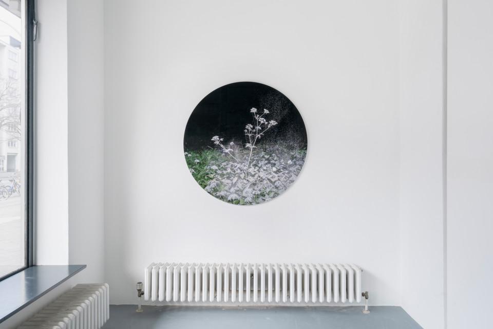 Luminous Matter, Dorothée Nilsson Gallery, Berlin, 2021
